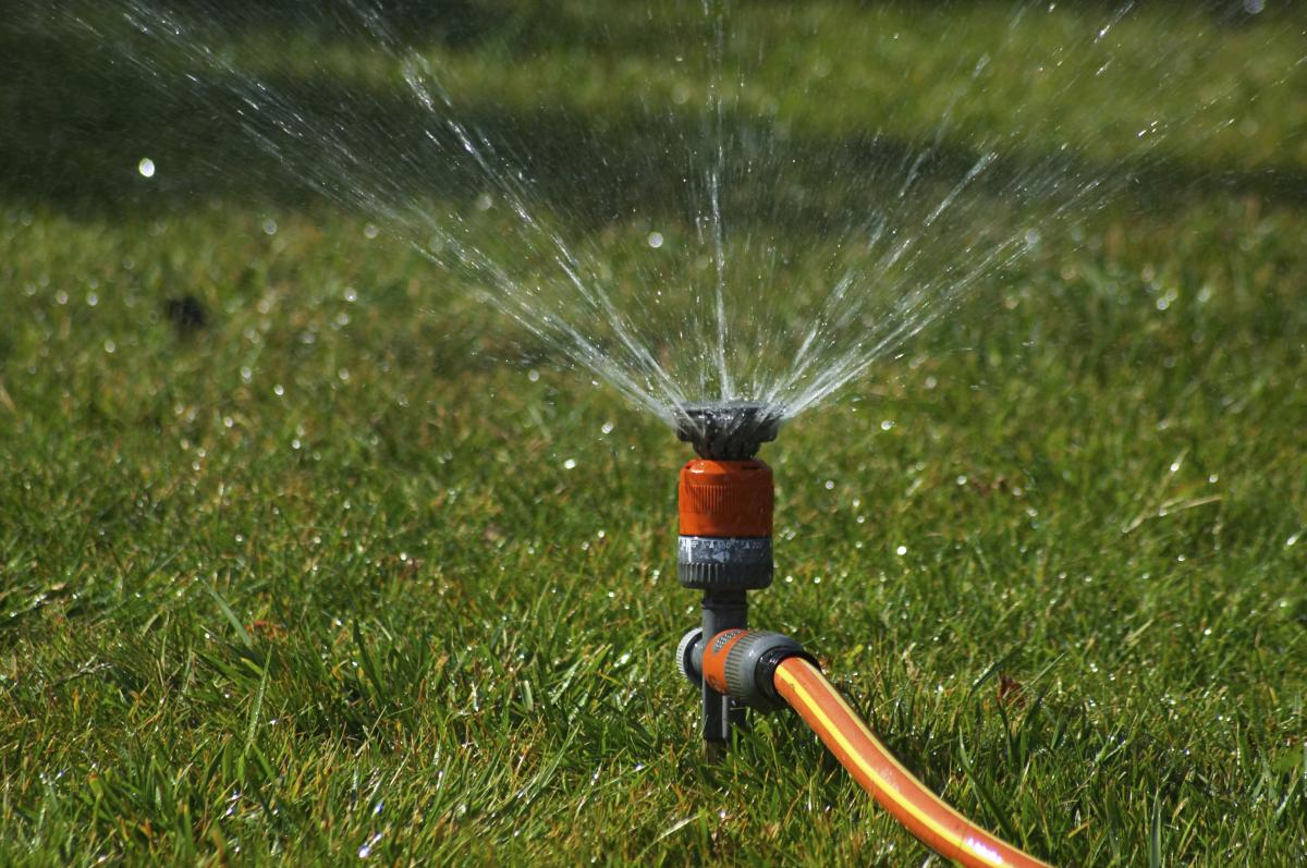 Summer lawn watering tips