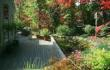 Level Greed Landscaping - Landscaped Deck and Gardens