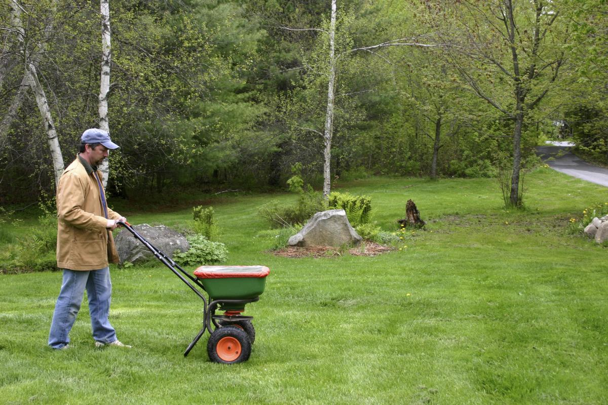 Fall Yard Care Tips Ithaca Norwich Elmira Syracuse